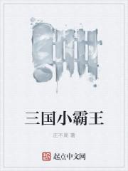 三国小霸王最新章节