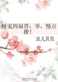 娇宠四福晋:爷,慢点撩!