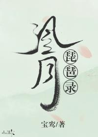 风月琵琶录