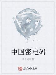 中国密电码