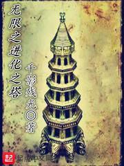 无限之进化之塔