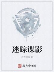 迷踪谍影最新章节