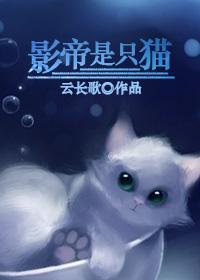 影帝是只猫