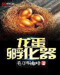 龙蛋孵化器
