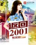 返回2001